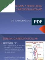 Anatomia y Fisiologia Cardiopulmonar