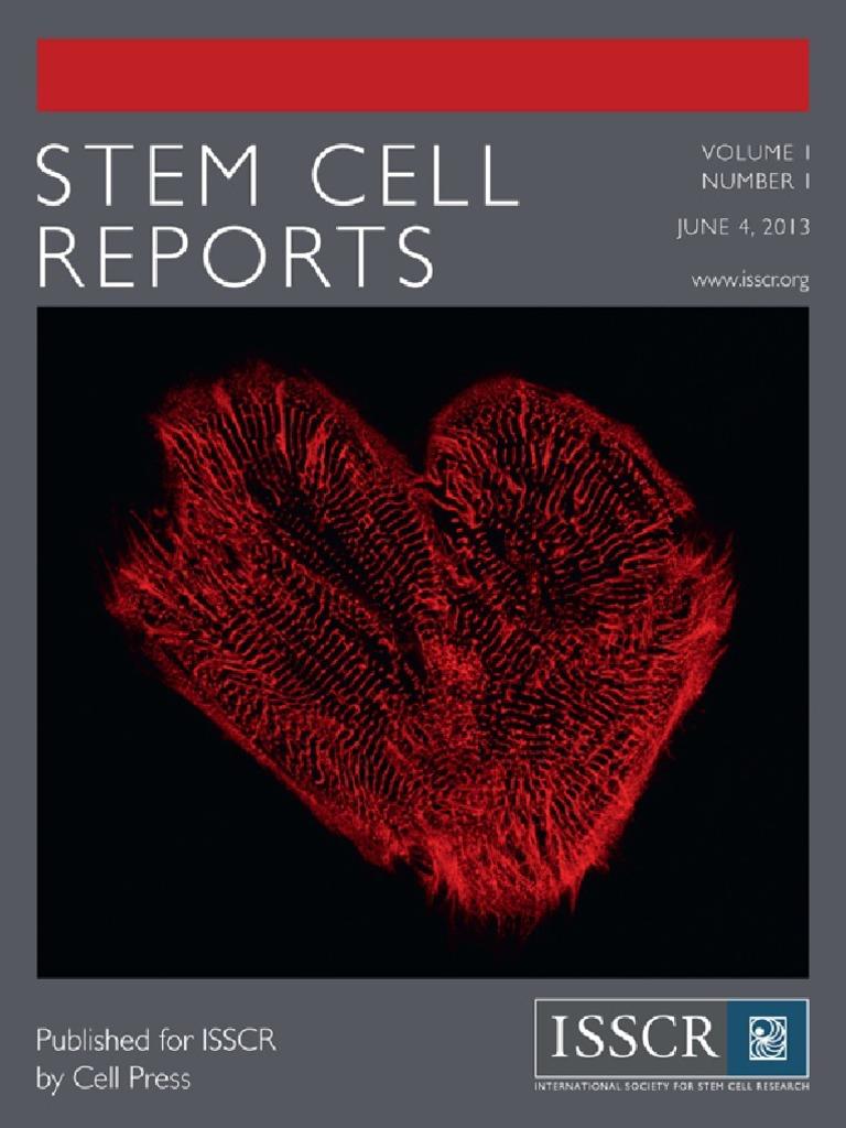86067a7066 vl1nb1 | Cell Potency | Stem Cell