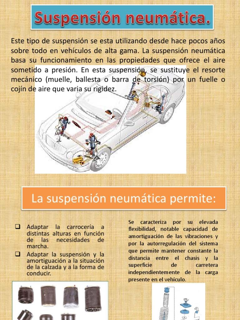Suspension Neuma Tica