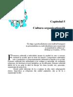 Cap 5 Cultura Organizationala