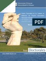 Tesis Doctoral Gestion Transcultural Cuidados
