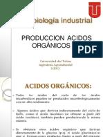 (146865612) ACIDOS ORGANICOS