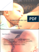 alimentacindellactante-100120184815-phpapp02