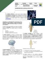 Guía Informativa Sistema Nervioso