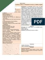 13 Vibrio Cholerae