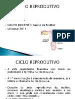 Ciclo Reprodutivo 2014 Marcelo