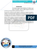 FORMATO I. SANITARIAS+