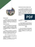 OBJETIVOS FACULTAD DE ARQUITECTURA