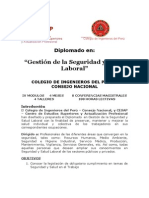 200709 Programa Del Diplomado