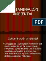 Contaminacion Yeducacion Amb.