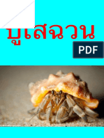 My Story About Hermit Crab (1)