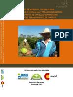 Estudio de mercado y rentabilidad del mburukuja (Passiflora spp.) para uso industrial.