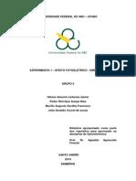 EN3717 Relatorio1Grupo5.PDF