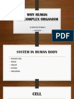 Why Human Are Complex Organism Aqilah