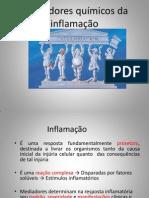 Mediadores Químicos Da Inflamação - Karol Completo