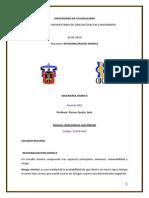 R Regionalizacion Sis