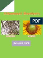 3- fibonacci presentation