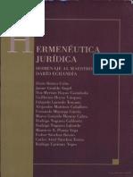 Hermenéutica Jurídica (INCOMPLETO)
