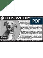 Fluvana SPCA Ad11-05-09