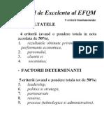 Modelul de Excelenta Al EFQM