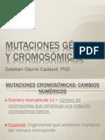 8a. MUTACIONES-II-cambios_numéricos b