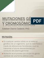 8. MUTACIONES I Aberraciones_cromosómicas I