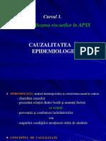 Curs 3 Identificarea Riscurilor Cauzalitatea - 2013-2014