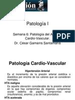 Patología CV