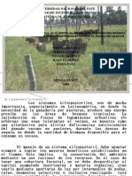 Presentacion de Sistema Silvopastoril