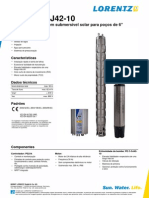 Lorentz PS21k C-sj42-10 Pi Pt Ver3081