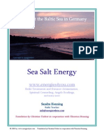 Sea Salt Energy Self Attunement Manual