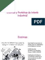 Tema 5.6 Enzimas y Proteinas de Interes Industrial - Alumnos