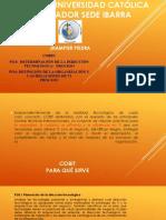 Po3 y Po4 Cobit Ingenieria de Software