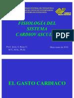 Gasto Cardiaco Formulas