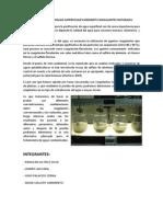 Clarificacion de Aguas Superficiales Mediante Coagulantes