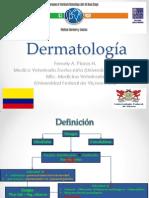 Expo Dermatología