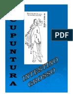 Meridiano Intestino Grosso