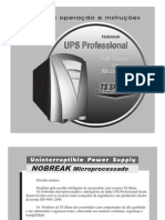 Manual UPS Professional