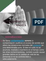 Contaminacionsonora Ecologia 110926141642 Phpapp02