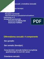 cromozomii sexuali