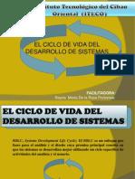 ciclo de desarrollo de vida.pptx