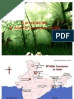 36710319 List of Popular Sanctuaries in INDIA