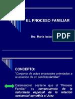 El Proceso Familiar (1)