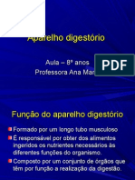 aparelho-digestc3b3rio