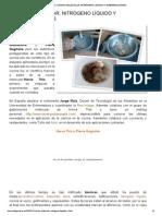 COCINA MOLECULAR, NITRÓGENO LÍQUIDO Y ESFERIFICACIONE.pdf