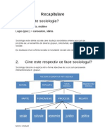 Sociologie Intrebări-raspunsuri Bac