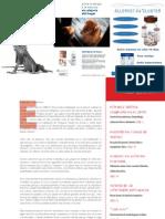 CV27.pdf