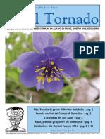Il_Tornado_629