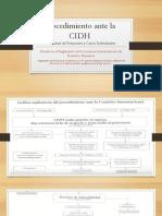 Procedimiento Ante La CIDH -Peticiones Individuales