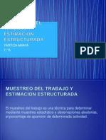 Muestreo Del Trabajo y Estimacion Estructurada